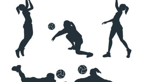 Union Sportive Volley Chamalière